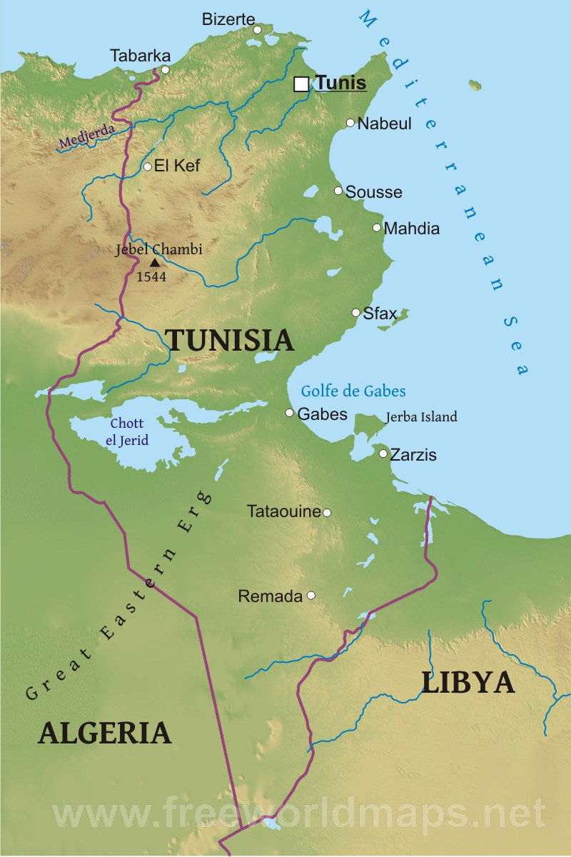 Tunisia Physical Map