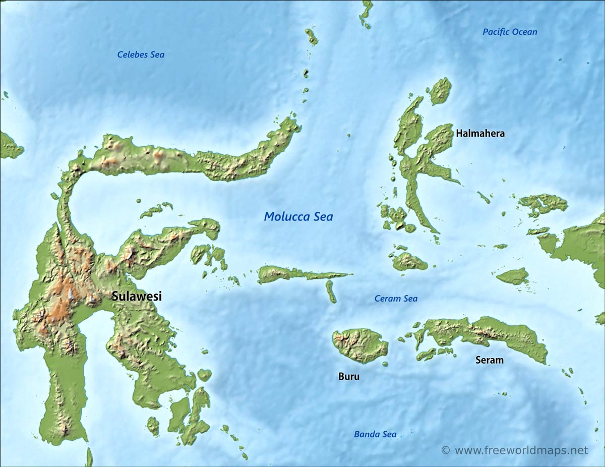 Molucca Sea map by Freeworldmapsnet