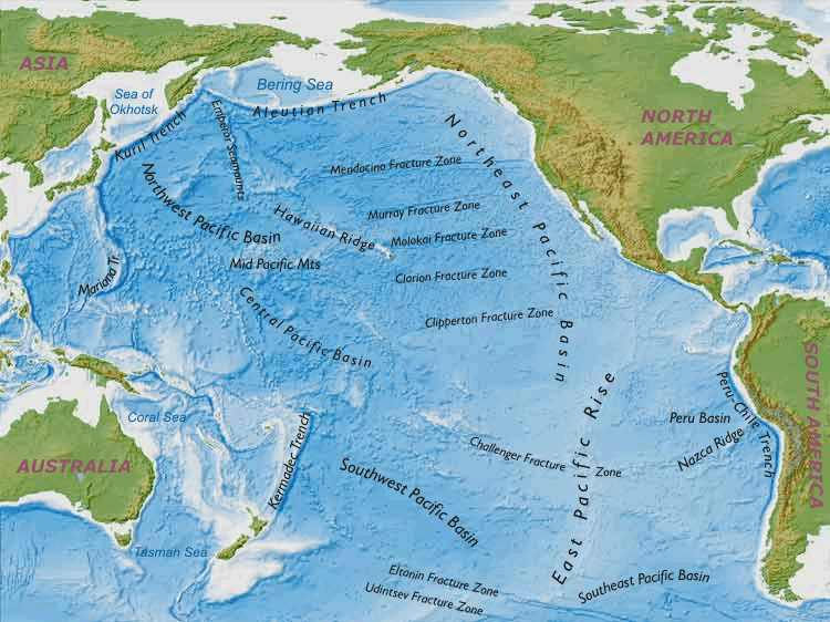 Pacific Ocean Topographic Map.Geography And Map Of The Pacific Ocean