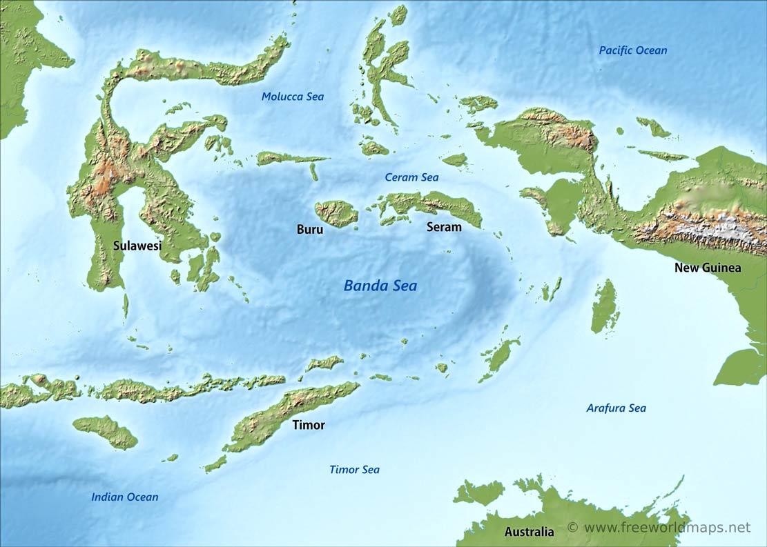 Laut banda merupakan laut terdalam di Indonesia. Laut ini berjenis laut ingresi karena terjadi tektonisme dimana dasar samudera turun relatif terhadap lempeng benua
